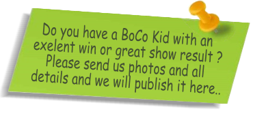 Do you have a BoCo Kid with an exelent win or great show result